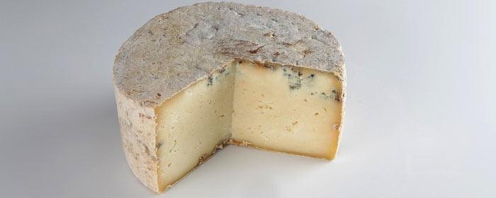 Blauschimmelkäse Gamoneu Käse aus Spanien
