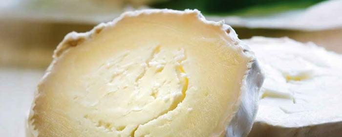 Spanischer Ziegenkäse – ein Geschmackserlebnis