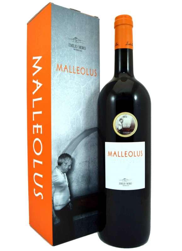 Malleolus (Magnum)