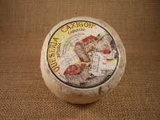 Käse Caxigon