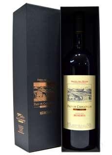 Rotwein Pintia (Magnum)