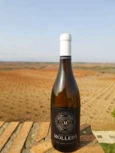 Weißwein Hacienda Molleda Blanco Joven